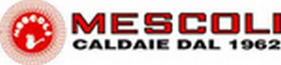 Euroman reprezentanta tehnica si comerciala radiant italia for Mescoli caldaie